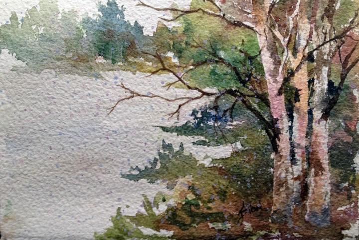 """Change of Season"" original fine art by Sue Dion"