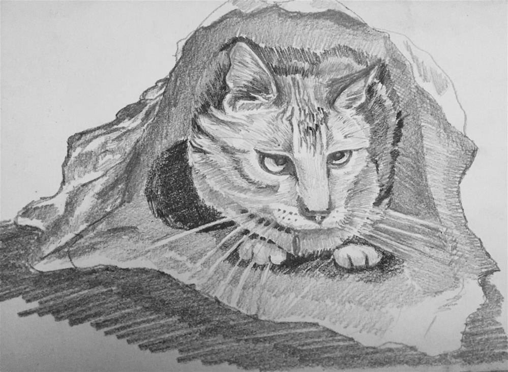 """""""A cat in a bag"""" original fine art by Natasha Ramras"""
