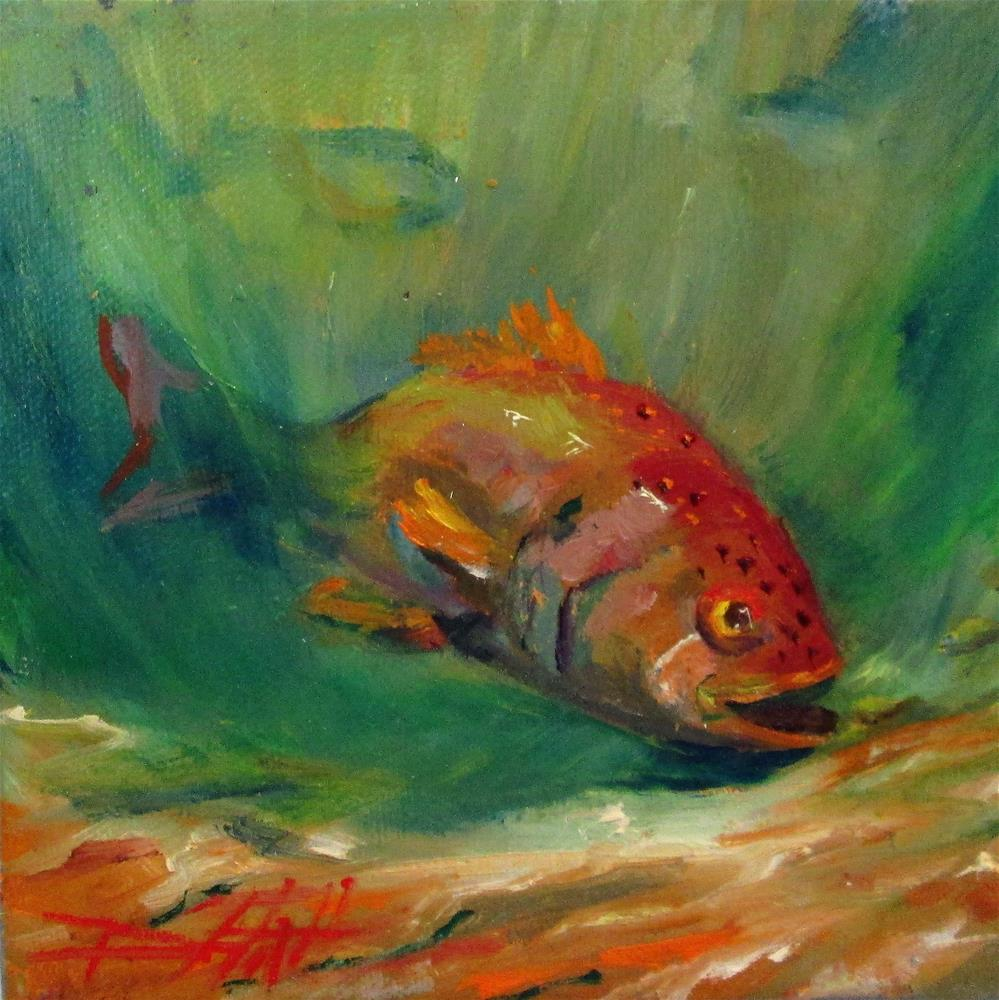 """""""Red Snapper"""" original fine art by Delilah Smith"""