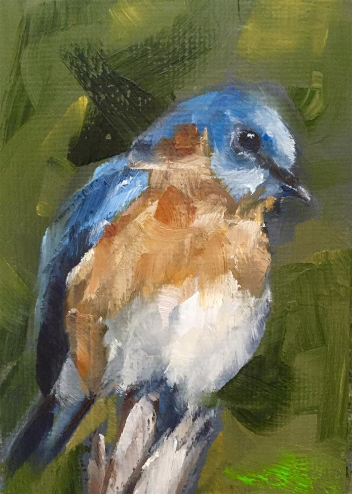 """Eastern Bluebird"" original fine art by Gary Bruton"