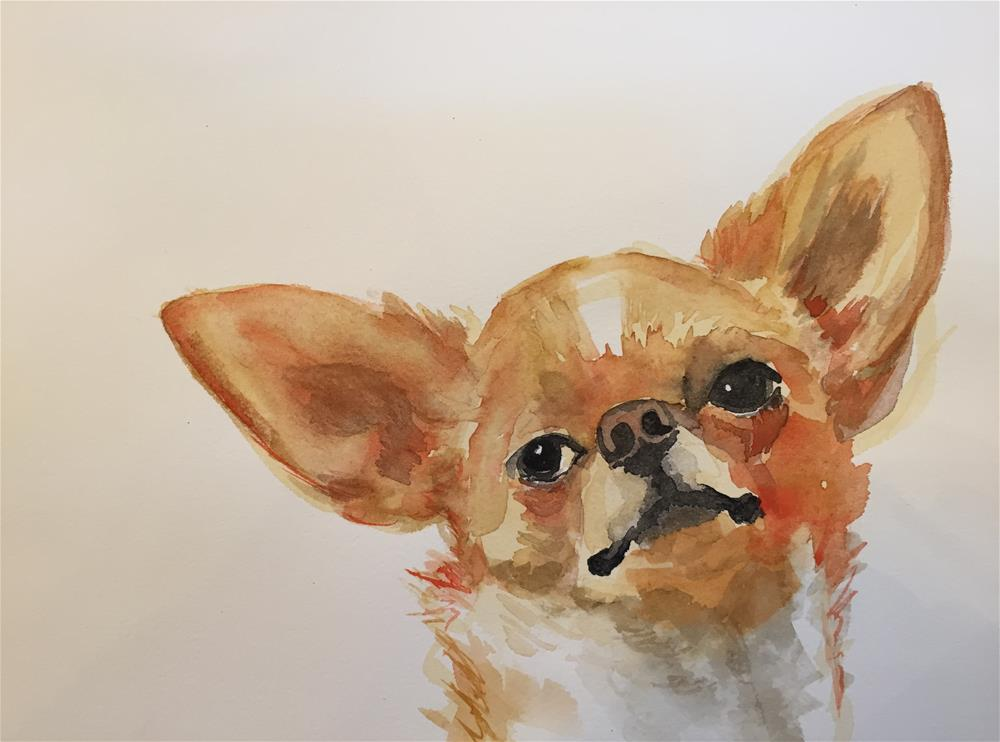 """aye chihuahua!"" original fine art by Cindy McDonough"
