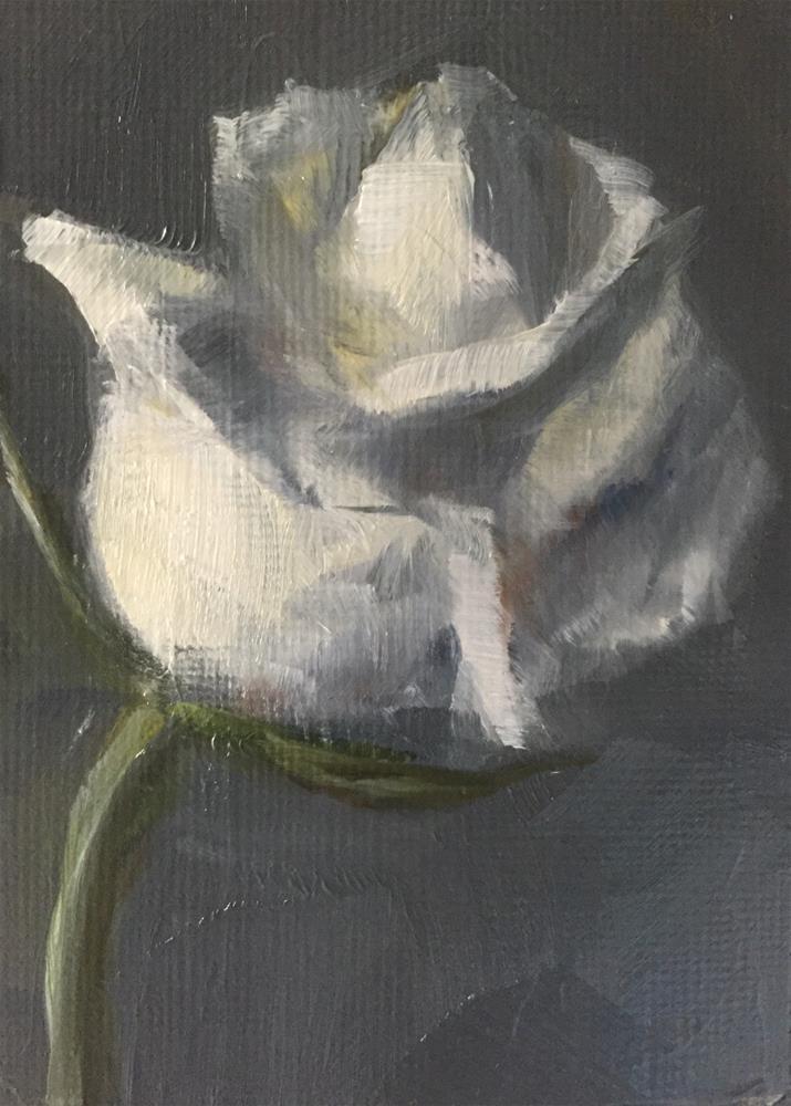 """White Rose Study"" original fine art by Gary Bruton"
