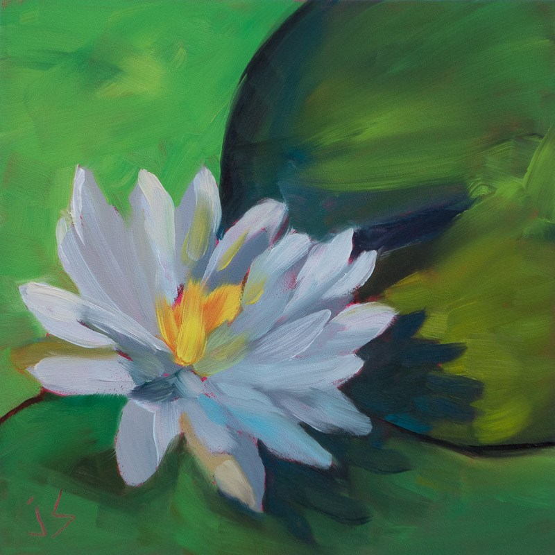 """""""Water Lily - Tranquility Beckons"""" original fine art by Johnna Schelling"""