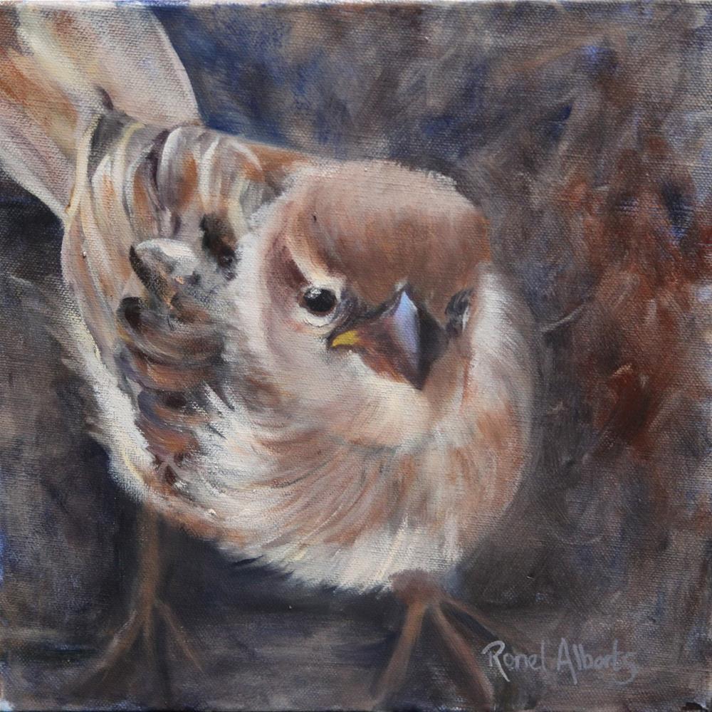 """""""Tweet... tweet!"""" original fine art by Ronel Alberts"""