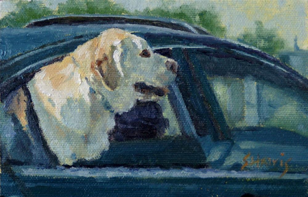 """Joy Ride"" original fine art by Sandra L Harris"
