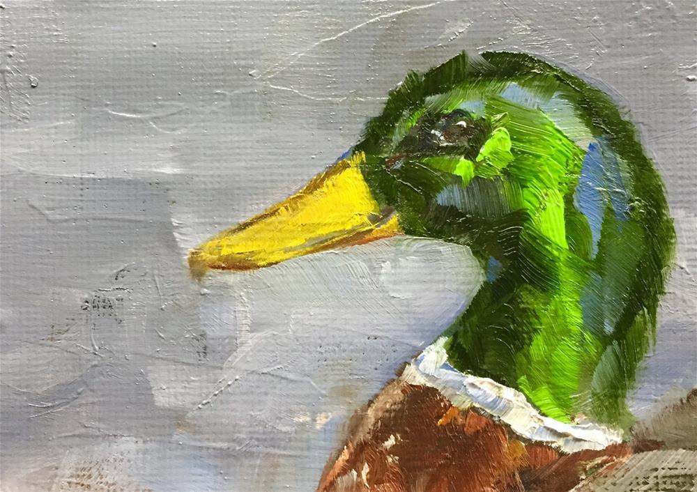 """""""Mallard Portrait"""" original fine art by Gary Bruton"""