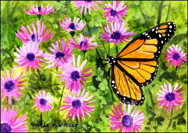 """""""Monarch in the Purple Daisies"""" original fine art by Patricia Ann Rizzo"""