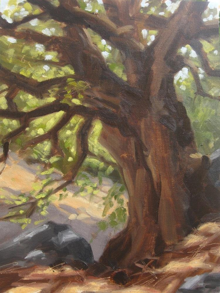 """Solid Oak, Idyllwild"" original fine art by Karen Werner"
