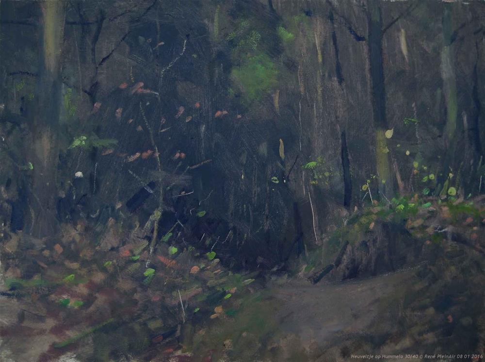 """""""Up hill Hummelo the Netherlands."""" original fine art by René PleinAir"""