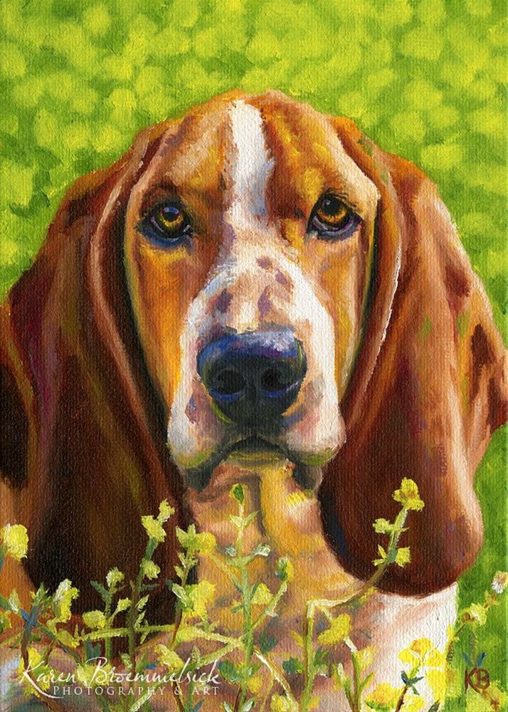 """Basset Hound in the Flowers"" original fine art by Karen Broemmelsick"