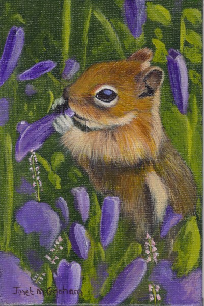 """Chipmunk Amongst the Flowers"" original fine art by Janet Graham"