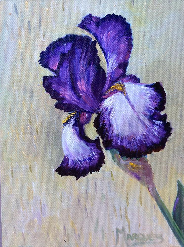 """Iris2"" original fine art by Kathy Marques"