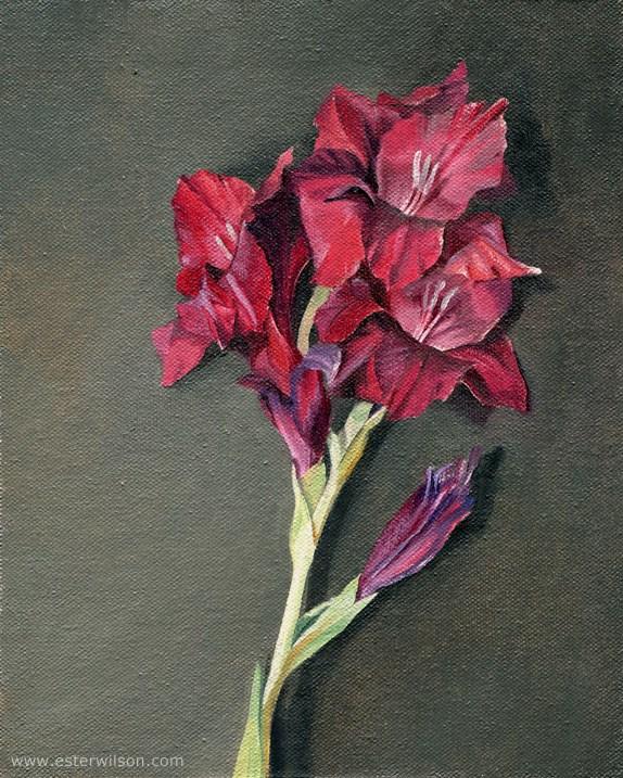 """Purple Gladiolus Blooms"" original fine art by Ester Wilson"