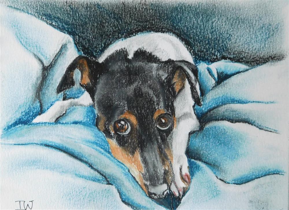 """Guilty  (Dog sketch 2)"" original fine art by Daryl West"