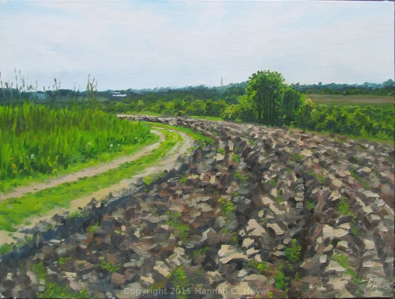 """Plowed"" original fine art by Hannah C. Heyer"