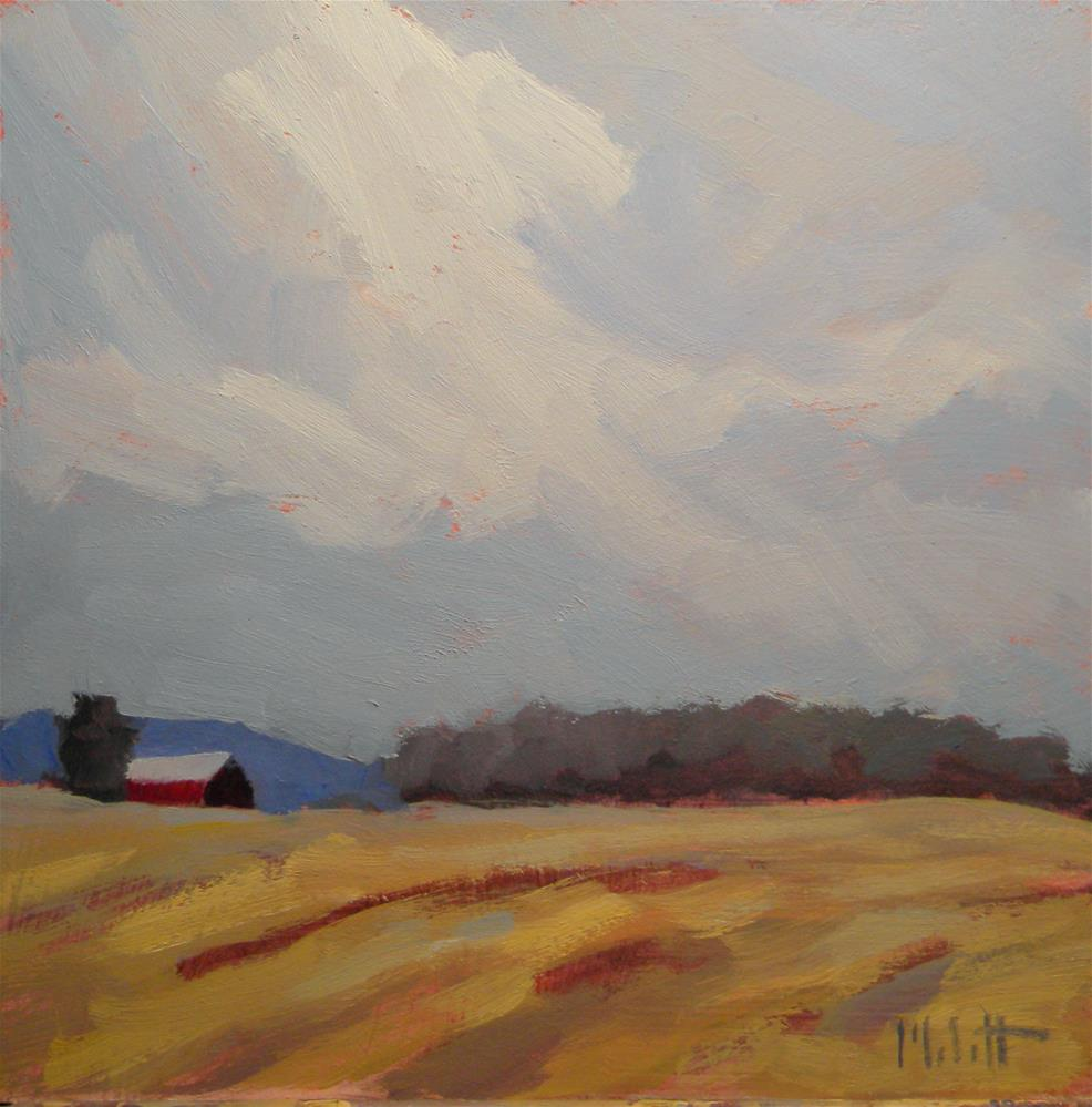 """Wheat Fields Rural Landscape"" original fine art by Heidi Malott"