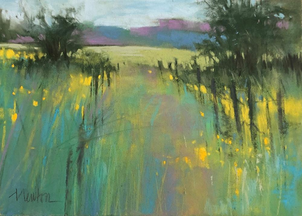 """Meadow"" original fine art by Barbara Benedetti Newton"