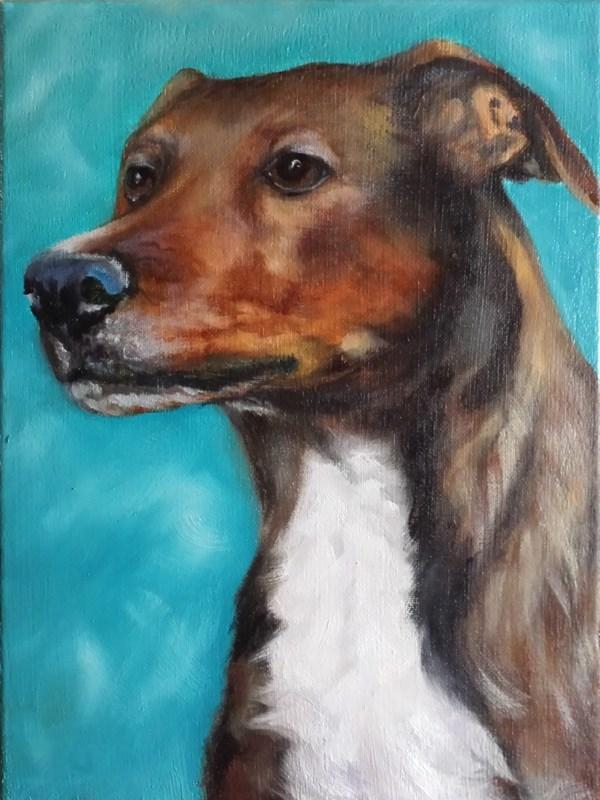 """Dude"" original fine art by Beverly Koldon"