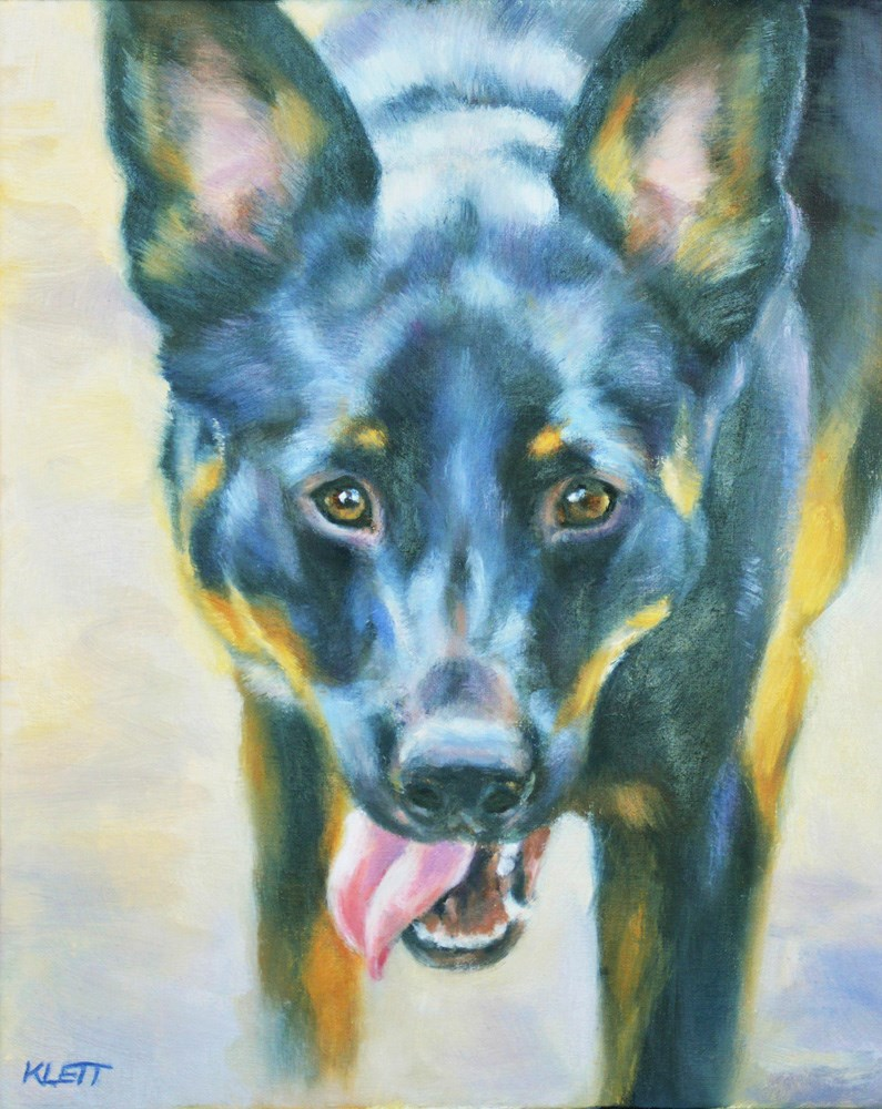 """Working Kelpie"" original fine art by Tracy Klett"