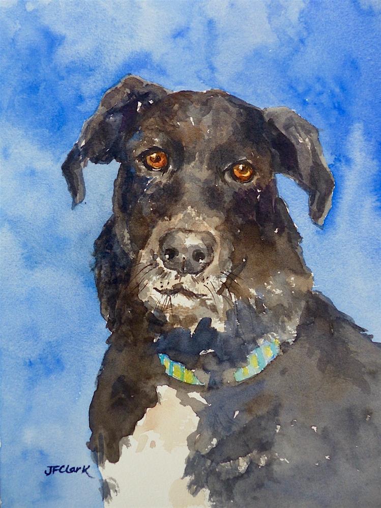 """Rescue Dog"" original fine art by Judith Freeman Clark"