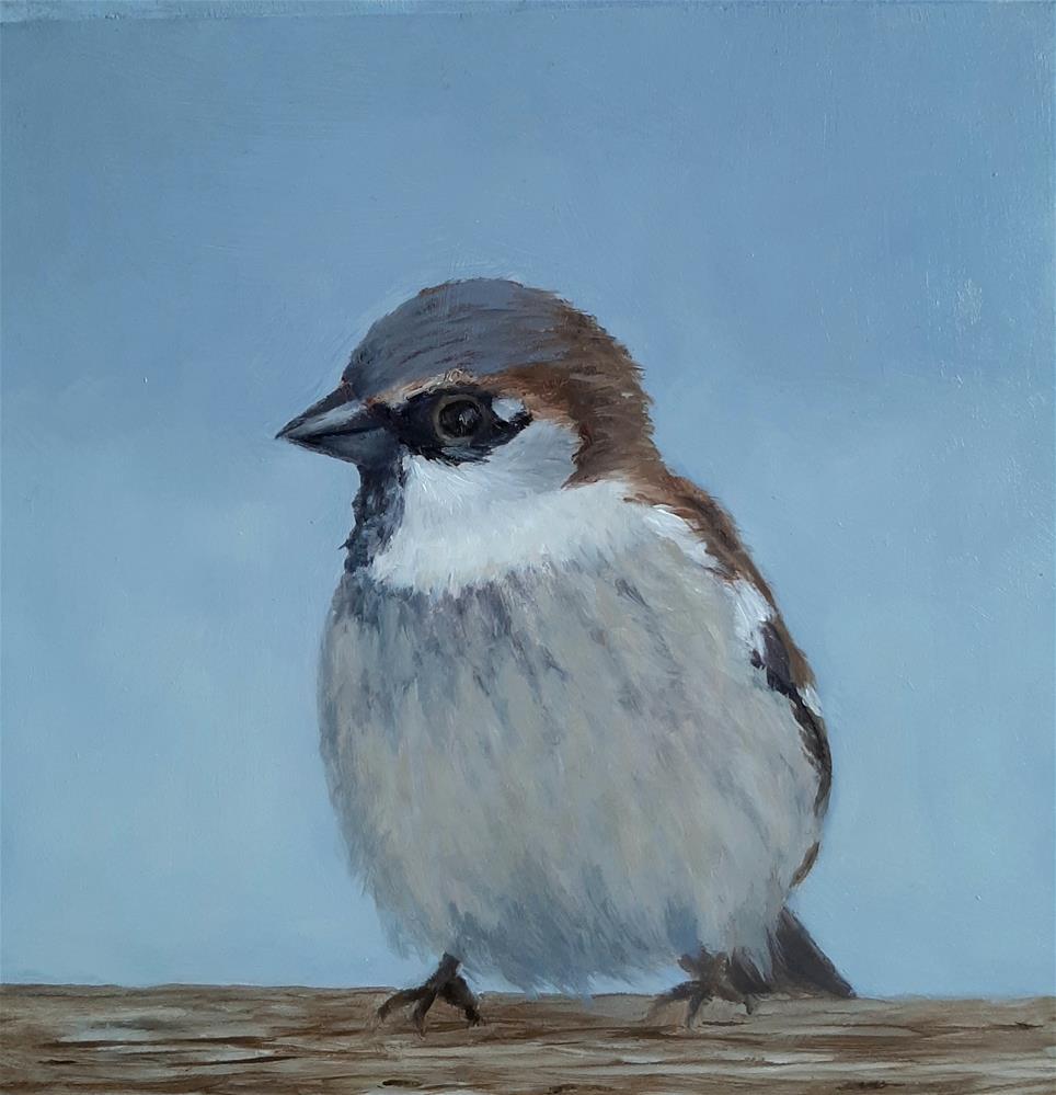 """House Sparrow"" original fine art by Karen Johnston"