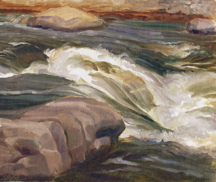 """Rapids at O'Fallon Park"" original fine art by Shawn Shea"