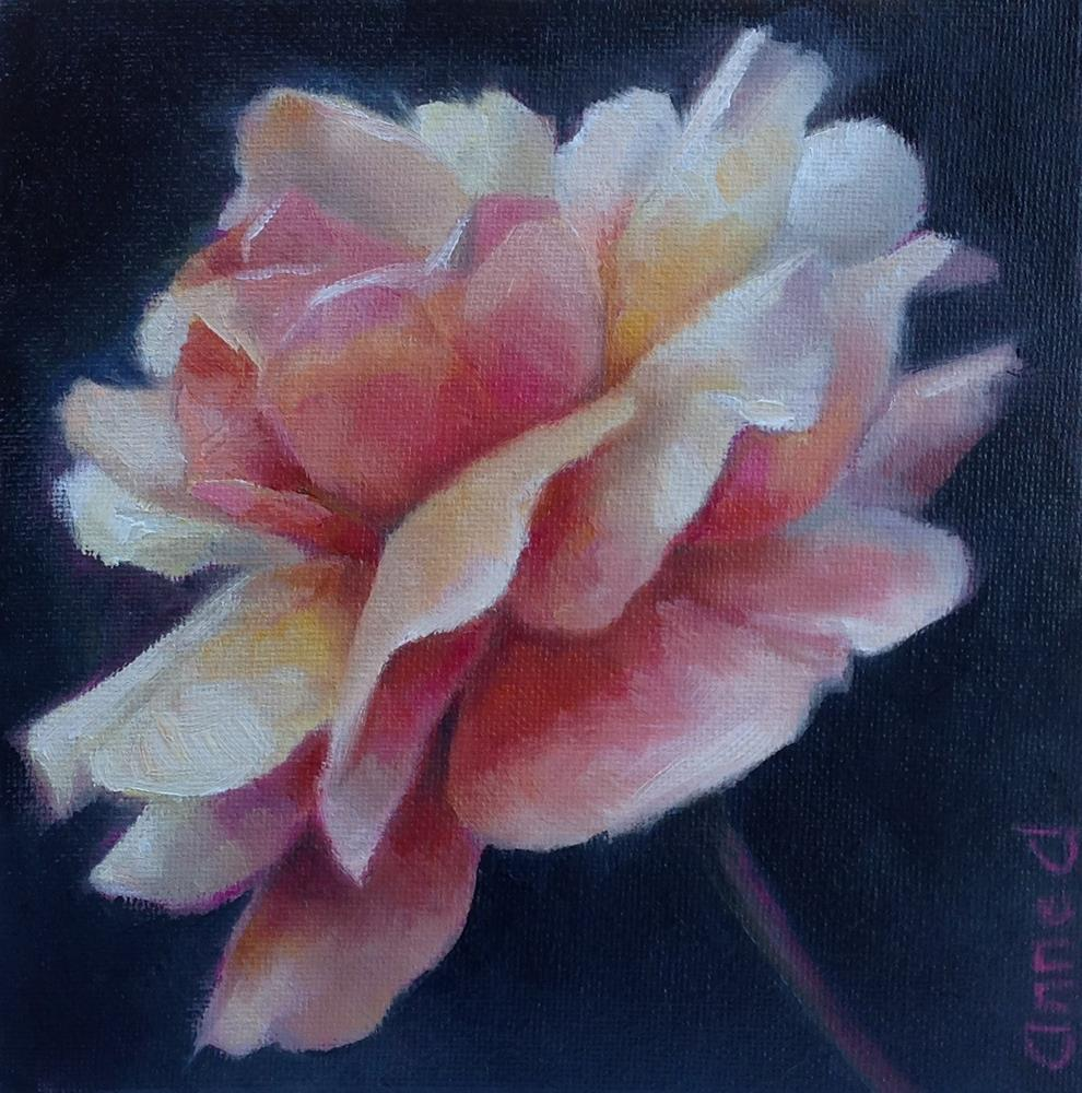 """Rose Glow"" original fine art by Anne Ducrot"