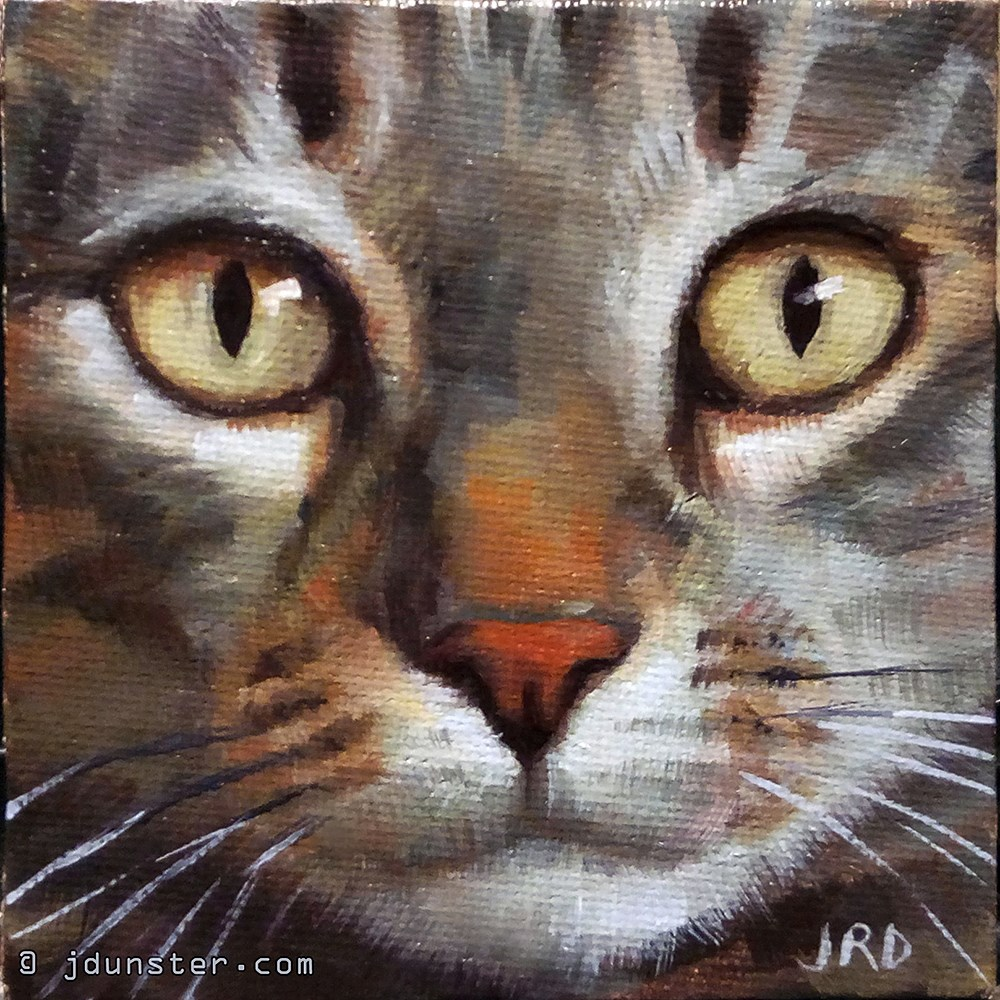 """Alert Tabby"" original fine art by J. Dunster"