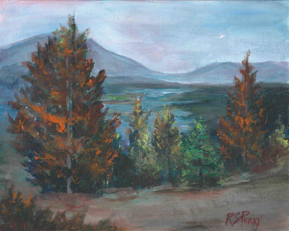 """""""Lake Norrell Overlook """" original fine art by R. S. Perry"""