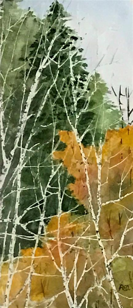 """assorted trees"" original fine art by Betty Argiros"