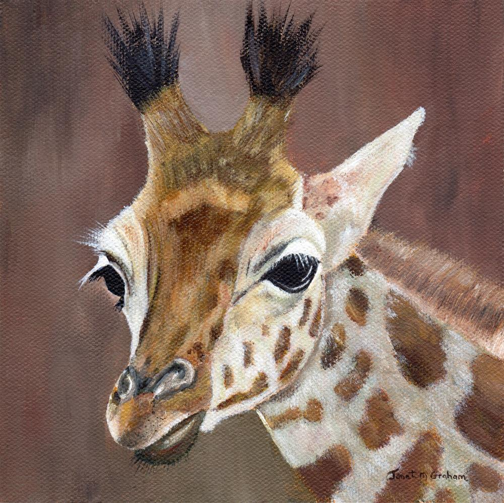 """Giraffe"" original fine art by Janet Graham"