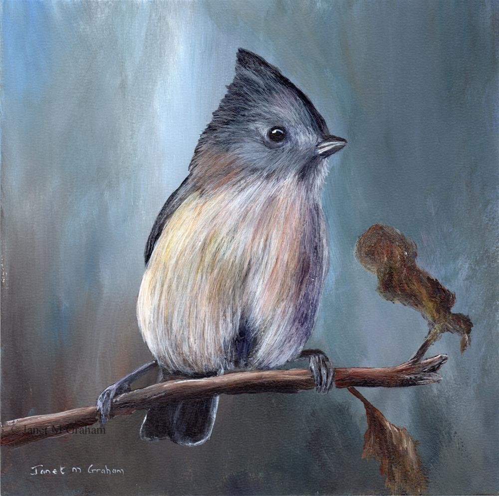 """Oak Titmouse"" original fine art by Janet Graham"