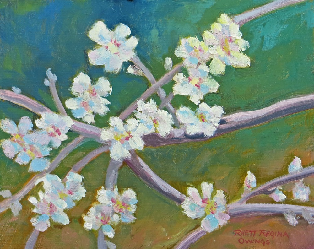 """Almond Blossom Spring"" original fine art by Rhett Regina Owings"