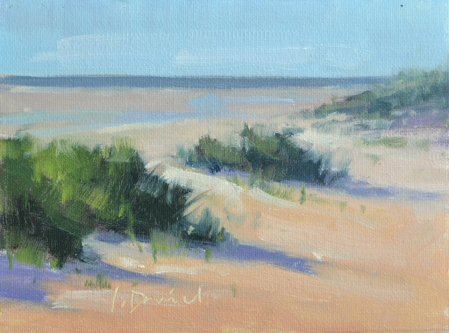 """Dune Shadows - Georgia Coast"" original fine art by Laurel Daniel"