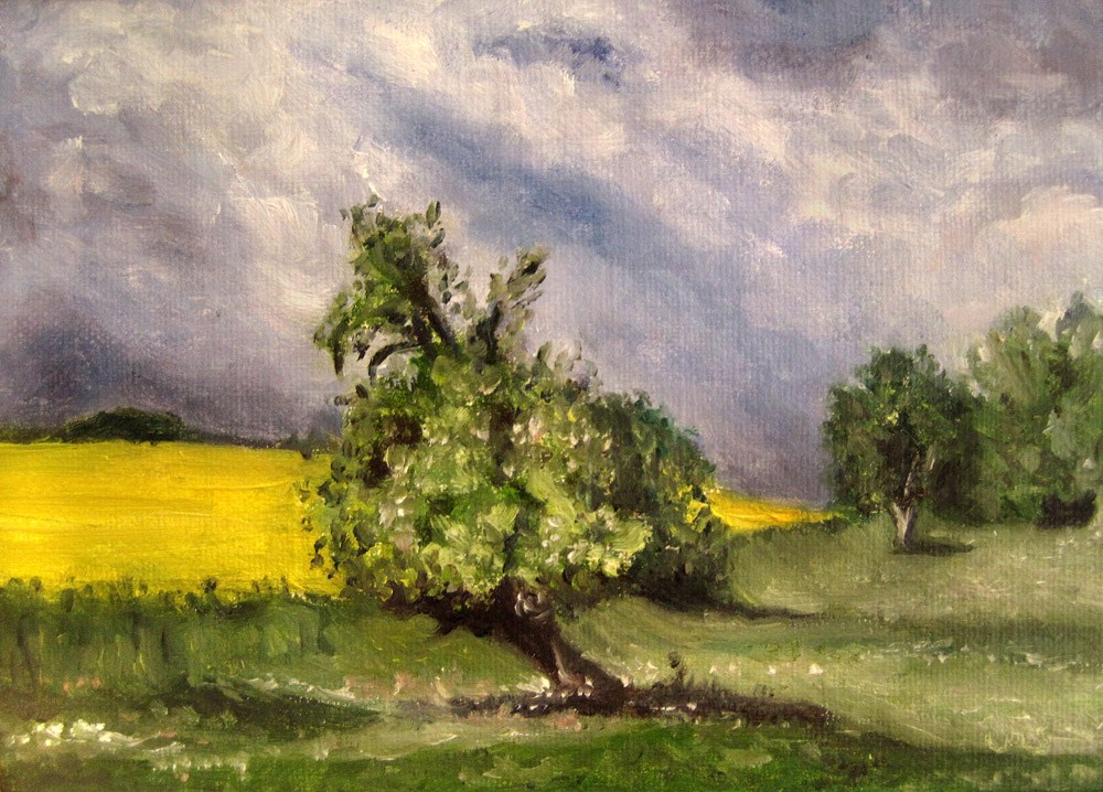 """Spring Meadow 2"" original fine art by Ulrike Miesen-Schuermann"
