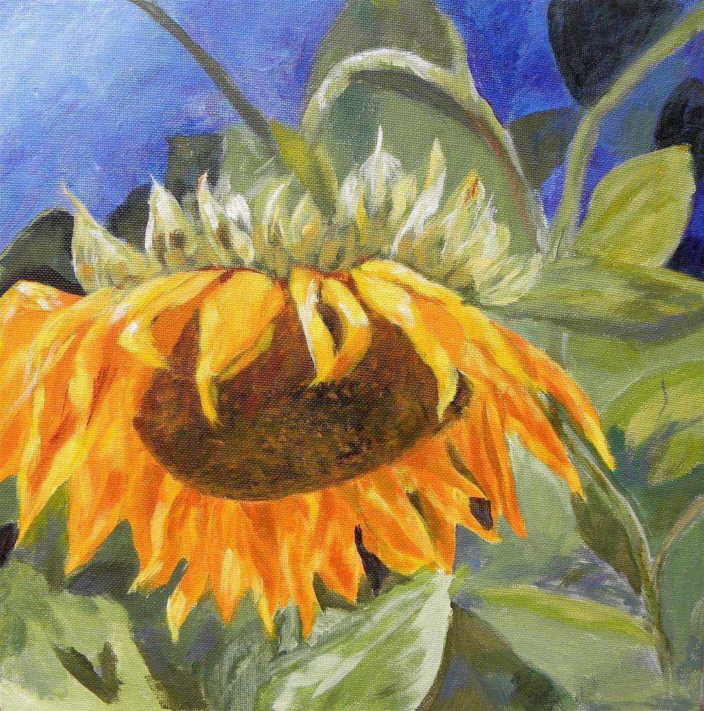 """Sunflower"" original fine art by cheryl buhrman"