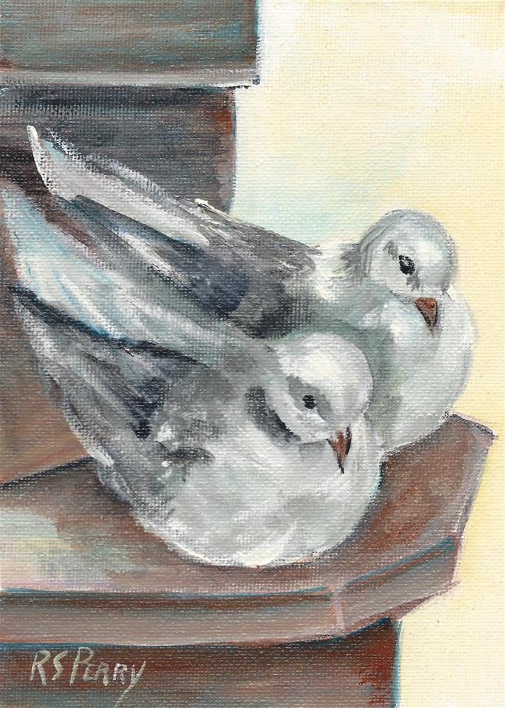 """Doves"" original fine art by R. S. Perry"