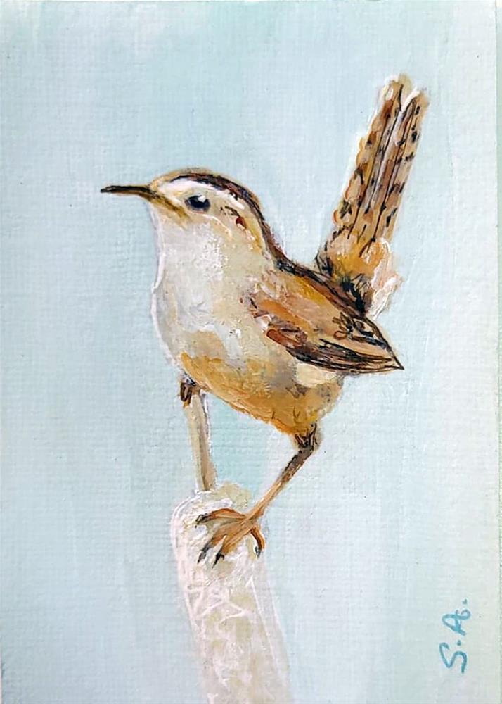 """Marsh Wren (ACEO)"" original fine art by Sunny Avocado"