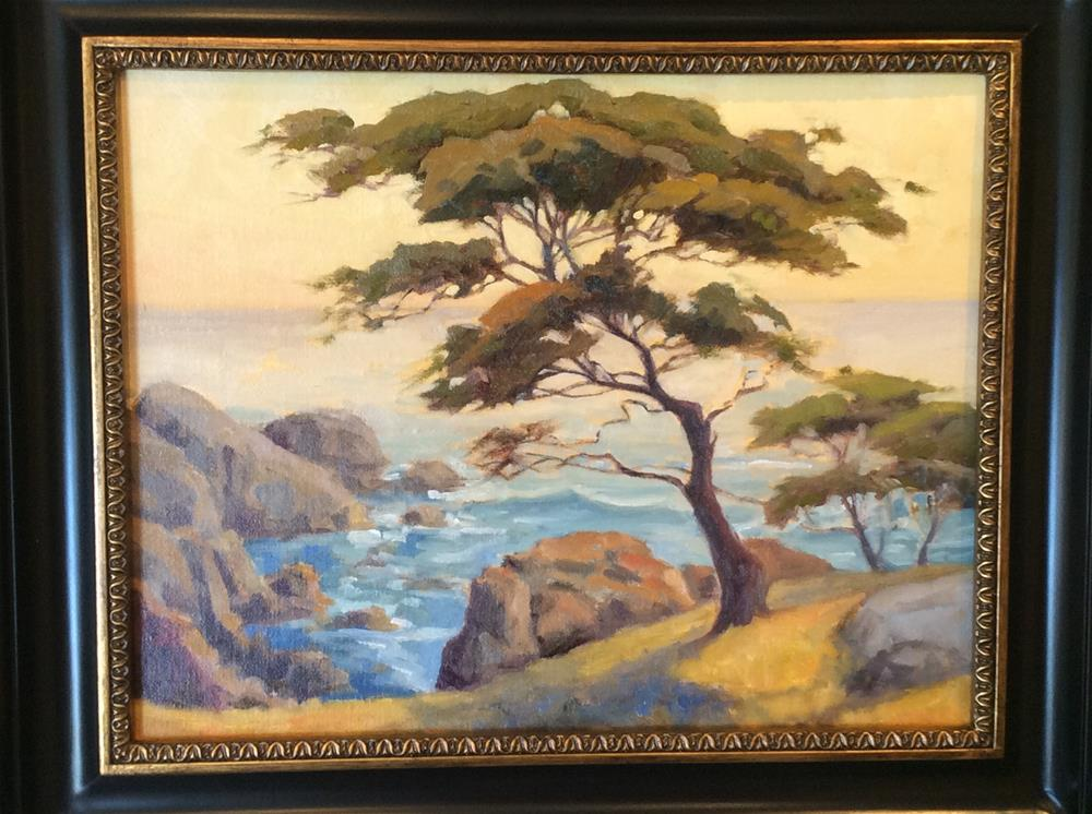 """Old cypress. UN framed."" original fine art by Leigh Alexandra Sparks"