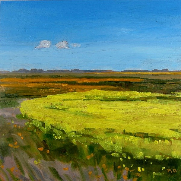 """On The Edge Of Canola"" original fine art by Nicki Ault"
