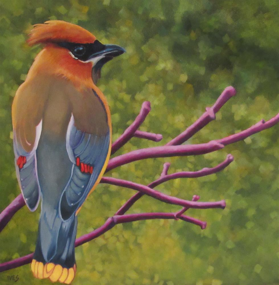"""Cedar Waxwing"" original fine art by Rebecca Ives"