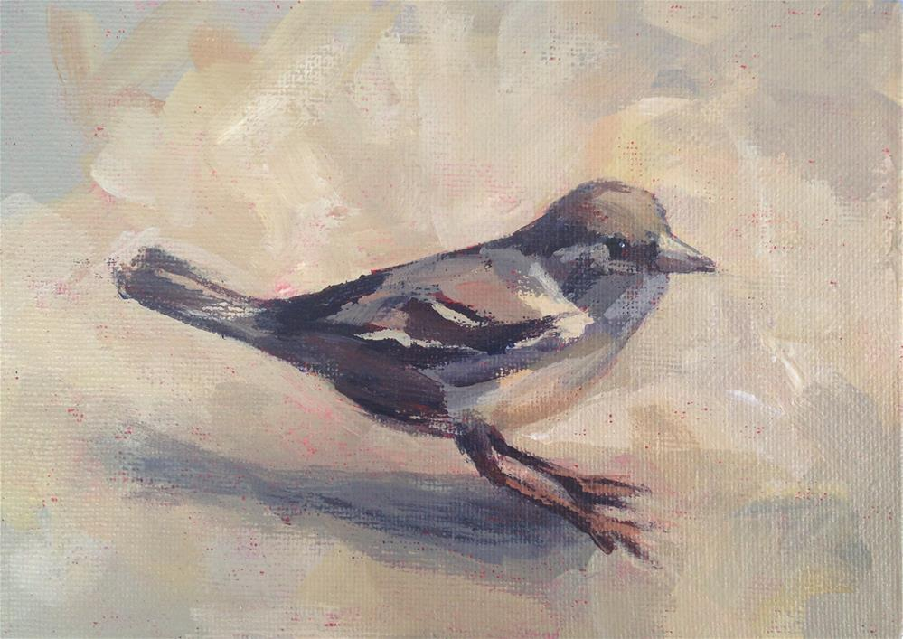 """Sparrow"" original fine art by Shannon Bauer"