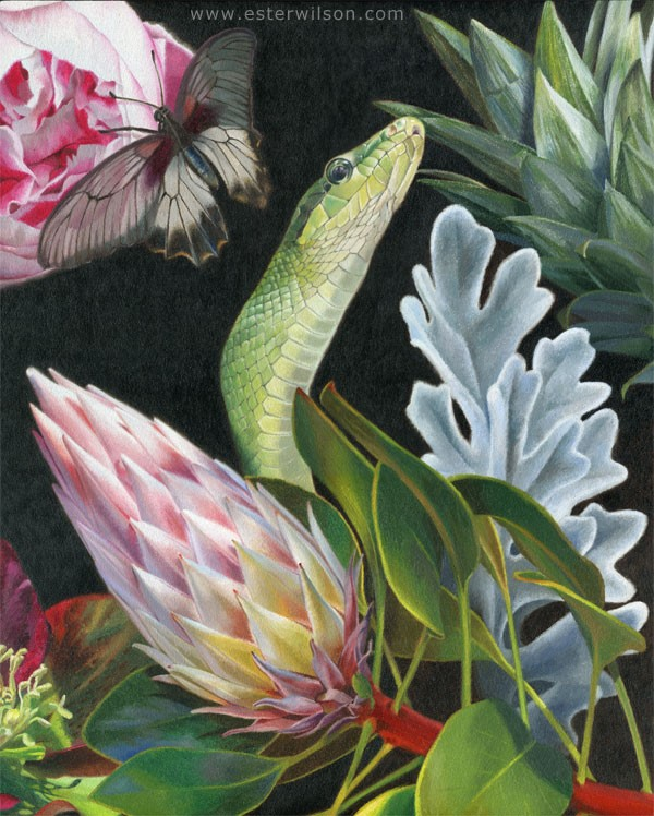 """Flora II"" original fine art by Ester Wilson"