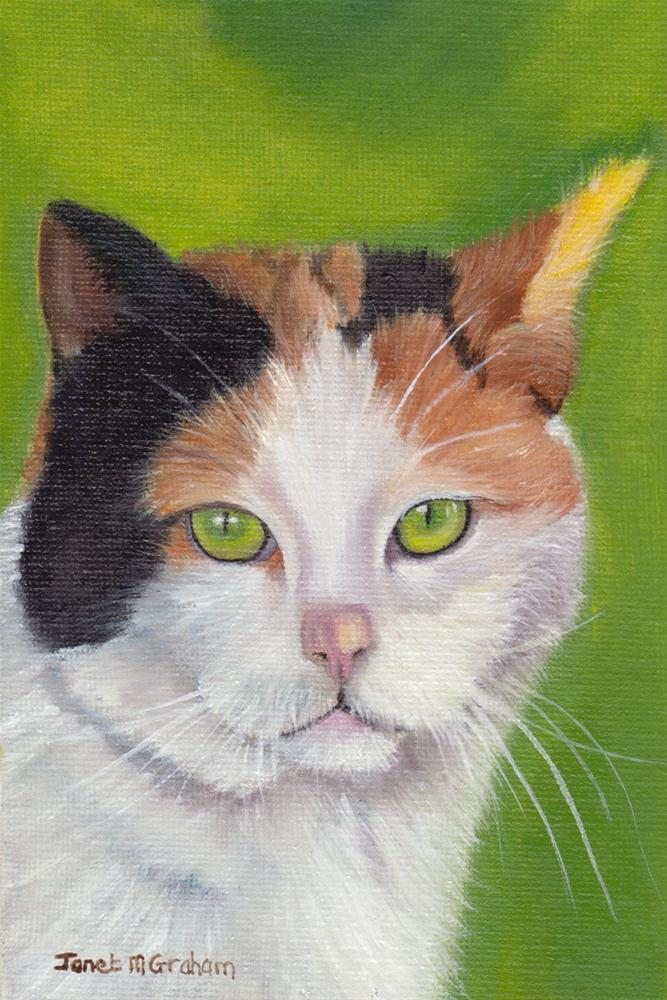 """Green Eyes (Cat)"" original fine art by Janet Graham"