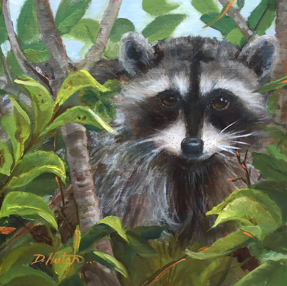 """Raccoon 2"" original fine art by Diane Hutchinson"