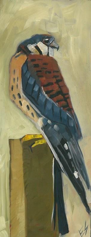 """American Kestrel Original Oil Paintnig"" original fine art by Elizabeth See"
