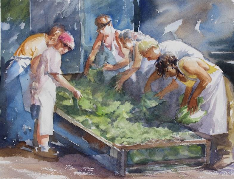 """""""Lettuce Washers"""" original fine art by Cedar Kindy"""