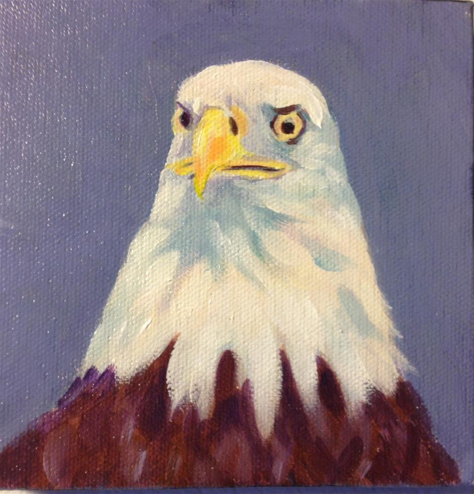 """""""Eagle study #2"""" original fine art by Dawn Melka"""