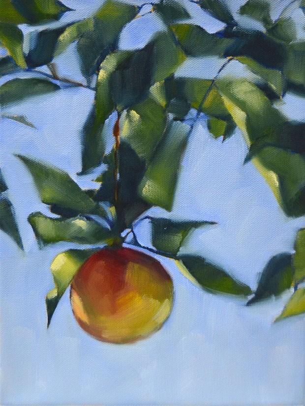 """California Apple"" original fine art by Cheryl Wilson"