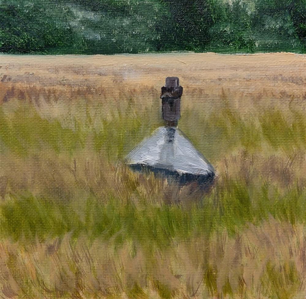 """Bird house in field"" original fine art by C J Schwarz"